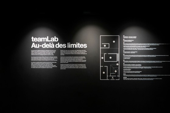 2018-08-Expo_teamLab-02